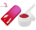 Gel Cor - T2 (Red Neon - Pink Neon)